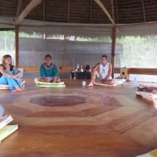 AyaAdvisors.org - Ayahuasca retreat reviews - Phoenix Ayahuasca