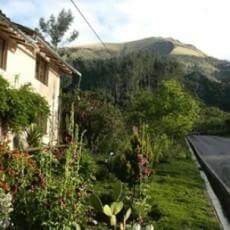 AyaAdvisors.org - Ayahuasca retreat reviews - Arutam Cusco